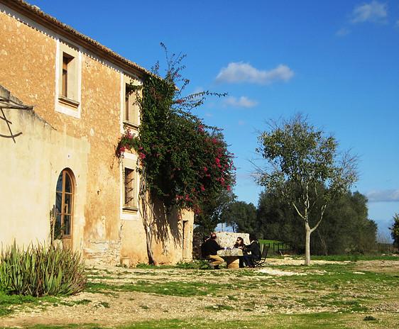 Asociacion PAS Galeria Fotos - PAS en Mallorca